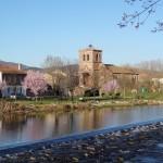 Primavera en Salinas (2)